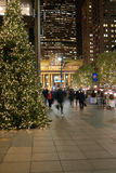 Park Avenue Christmas New York USA Royalty Free Stock Images