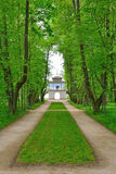 The Park and Avenue in the estate, the house-Museum of Peter Abr Stock Images