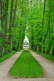 The Park and Avenue in the estate, the house-Museum of Peter Abr Royalty Free Stock Photo
