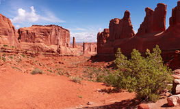 Park Avenue panorama. Arches National Park, Utah, USA Stock Images