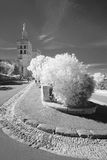The Park in Avignon. Part of the Park around the papal palace in Avignon, south of france. Infrared, blackandwhite stock photo