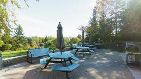 Park backyard area. Bbq area stock footage