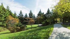 Park backyard area stock video