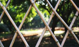 The park bamboo fence Stock Photography
