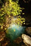 Park Banias Stock Images