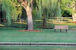 Park-Bank durch Teich an einem Sommer-Tag lizenzfreies stockfoto