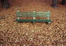 Park-Bank mit Herbst-Blättern Lizenzfreies Stockbild