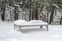 Park-Bank mit Schnee im Winter Stockbild