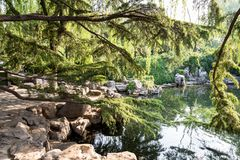 The park of Baotu Quan in Jinan, China. The park of Baotu Quan, also called `the Best Spring in the World` in the heart of Jinan city, Shandong, China Stock Photography
