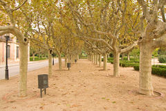 Park in Barcelona lizenzfreies stockbild