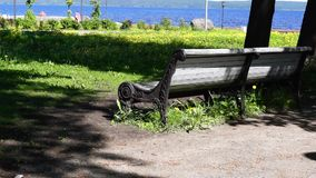 Park on bay coast in summer tilt up stock video