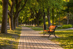 Park. Beautiful brown bench at park Stock Image