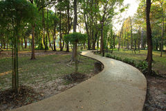 Park. Beautiful green park Thailand Stock Photo