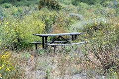 Park bench. In weeds royalty free stock images