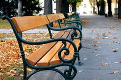 Park bench. Autumn at the  Vienna University Campus (formerly: General Hospital /Altes Allgemeines Krankenhaus) where Sigmund Freud worked between 1882 and 1886 Stock Photos
