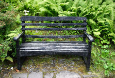 Park Bench. Surrounded by greenery stock photography