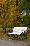 Park bench. Next to road Royalty Free Stock Photos