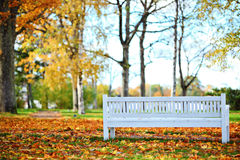 Park bench. Bench in the autumn park Stock Photography