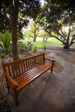 Park Bench. Shaded bench in a city park Stock Photography