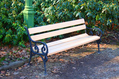 Park bench stock photo