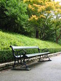 Park bench. A solemn scene of a park bench Royalty Free Stock Photos