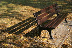 Park bench. Bench in a park in autumn Royalty Free Stock Photos