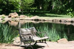 Park Bench. Beside a tranquil pond on a summer day Royalty Free Stock Photography