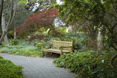 The Park Bench. Park bench with footpath in foreground Royalty Free Stock Images