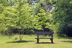 Park Bench. A park bench with some tranquil trees in the background stock photography