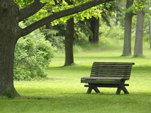 Park Bench. In a summer park in Finland Royalty Free Stock Photography