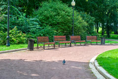 Park Bench and Alley in park outdoors Stock Image