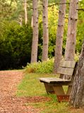 Park bench along a path Royalty Free Stock Images