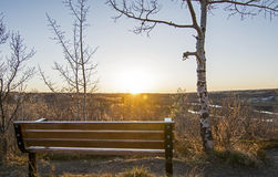 Park Bench and Aspen Trees at Sunset in Calgary, Alberta, ,Canad Stock Photos