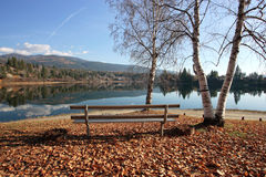 A park bench in autumn. A park bench by the water in a park in Ione, Washington Stock Photography