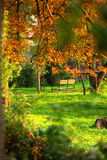 Park bench in autumn  Stock Photography
