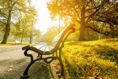 Park bench in autumn Royalty Free Stock Images