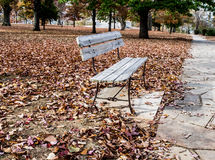 Park Bench in Autumn. Blanket of leaves in gold and burgundy surround empty wooden bench in city park Stock Photo