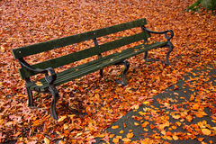 A park bench in Autumn Royalty Free Stock Photography
