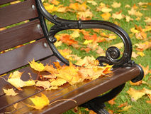 Park bench in autumn close up. Yellow leaves lie on a bench in park in the autumn royalty free stock photography