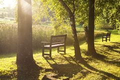 Park bench. In the autumn evening park Royalty Free Stock Photo