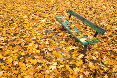 Park bench and autumn leaves Royalty Free Stock Photography