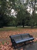 Park bench in autumn Stock Image