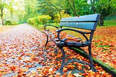 Park bench and autumn leaves. Covering the road Royalty Free Stock Photos