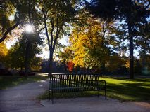Park bench in autumn park. Park bench in an autumn city park Royalty Free Stock Images