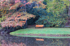 Park Bench Autumn Reflection Stock Photo