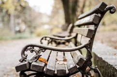 Park bench in the autumn. Stock Photo