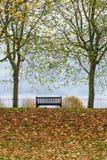 Park bench autumn UK Royalty Free Stock Photography