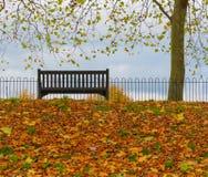colchester castle park autumn uk  Stock Photography