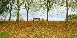 Park bench autumn UK Stock Images