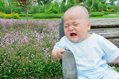 A park bench crying child Royalty Free Stock Images